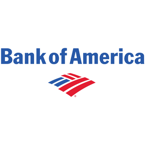 debt relief success story with bank of america credit card debt